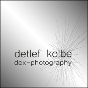 Logo dex - photography, Fotografie & Video Erzgebirge